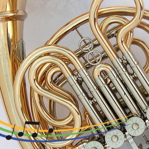 https://www.musikschule-steisslingen.de/wp-content/uploads/2019/03/Horn_500x500-500x500.png