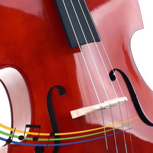 https://www.musikschule-steisslingen.de/wp-content/uploads/2019/03/Kontrabass_500x500-500x500.png