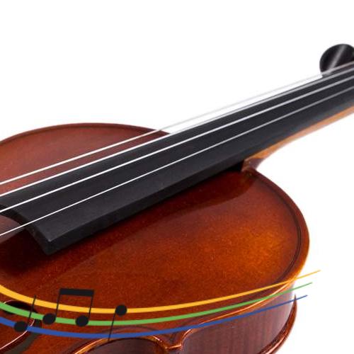 https://www.musikschule-steisslingen.de/wp-content/uploads/2019/03/Violina_500x500-500x500.png